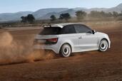 http://www.voiturepourlui.com/images/Audi/A1-Quattro/Exterieur/Audi_A1_Quattro_003.jpg