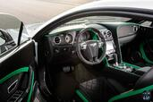Photo Bentley Continental-GT3-R 2014 Bentley Continental GT3 R http://www.voiturepourlui.com/images/Bentley/Continental-GT3-R/Interieur/Bentley_Continental_GT3_R_001.jpg