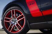 http://www.voiturepourlui.com/images/Ford/Mustang-Boss-302-Laguna-Seca/Exterieur/Ford_Mustang_Boss_302_Laguna_Seca_010.jpg