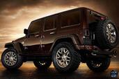 http://www.voiturepourlui.com/images/Jeep/Wrangler-Sundancer-Concept/Exterieur/Jeep_Wrangler_Sundancer_Concept_003.jpg