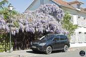 http://www.voiturepourlui.com/images/Subaru/Forester-2014/Exterieur/Subaru_Forester_2014_005.jpg