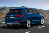 Audi SQ5 TDI exclusive concept  photo 2 http://www.voiturepourlui.com/images/Audi/SQ5-TDI-exclusive-concept/Exterieur/Audi_SQ5_TDI_exclusive_concept_002.jpg