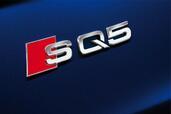 Audi SQ5 TDI  photo 8 http://www.voiturepourlui.com/images/Audi/SQ5-TDI/Exterieur/Audi_SQ5_TDI_008.jpg